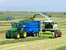 To make better grass silage, rapid wilt and use an effective silage additive