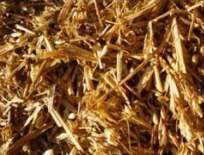 Chopped straw alone will not prevent acidosis