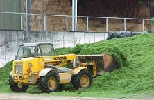 Take care filling the pit. Good consolidation is essential. Make sure that you have enough pit capacity. Never overfill silage pits and never have slopes of more than 30°