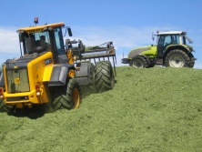 Take care when selecting the best silage additive. A large clamp contains many thousands of pounds worth of forage