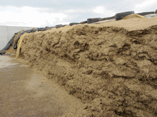Attention to detail, rapid, effective sealing and selecting the best silage additives can save thousands of pounds in reducing feed nutrient losses and concentrate costs
