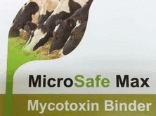 Control of Mycotoxins can help to avoid many health and performance issues on dairy and livestock farms