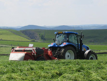 Grass is a valuable crop. Silage additives retain more feed value