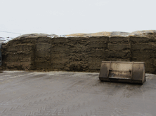 Pit cleanliness is a priority at Manor Farm where the goal is to minimise silage spoilage and wastage.