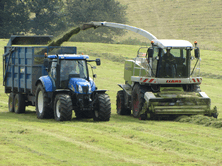 Silage Additives are very cost effective and profitable even at low milk prices