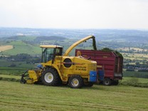 Your silage quality is important. All silage should be treated with an effective forage additive for maximum profitability.