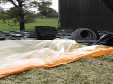 Attention to detail in sealing the silage clamp, making it completely air tight makes a massive difference. Use Silostop orange or black oxygen barrier. Use the best silage additive available